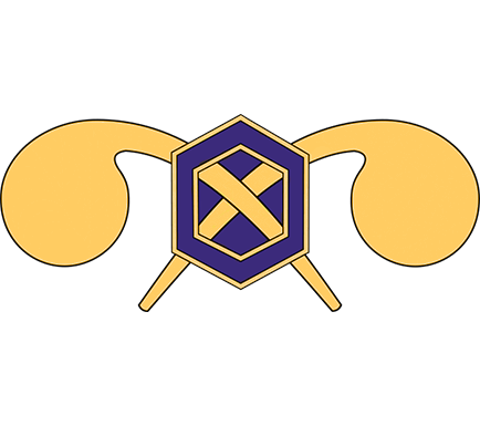 Chemical Branch Insignia
