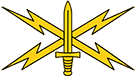 Cyber Branch Insignia