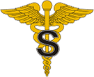 Medical Specialist Corps Branch Insignia