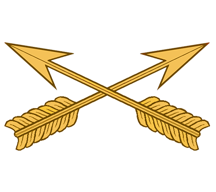 Special Forces Branch Insignia